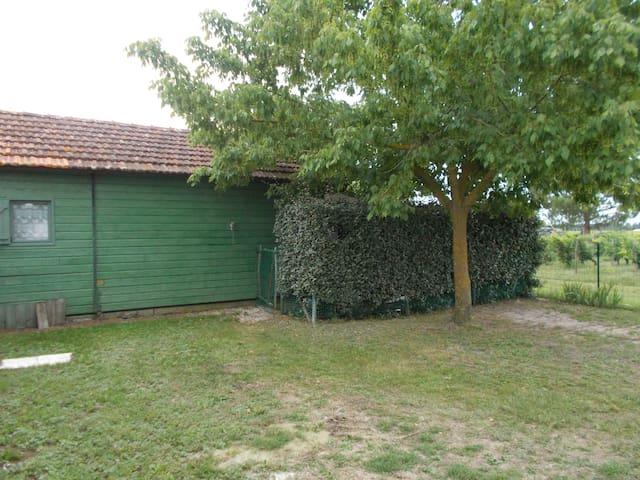 loue chalet bois de 35 m² en Médoc (lou cabanou )