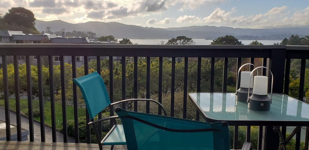 Bay View 1 bedroom with private bath in Tiburon
