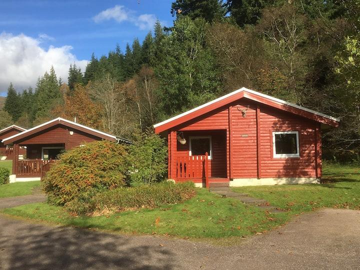 Luxury Lodge in Magical Woodland Setting. Sleeps 4