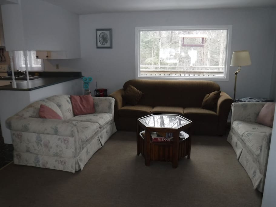 Open concept, well lit main floor living room with large windows and access to screened in porch.