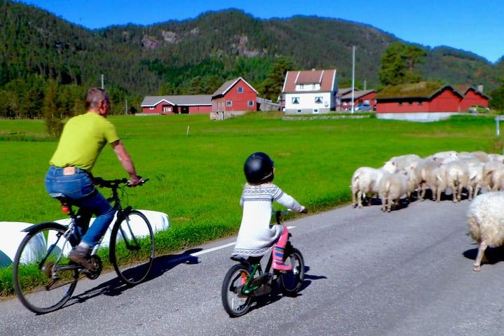 Idyllisk landlige omgivelser på Torvløbakkan Gard