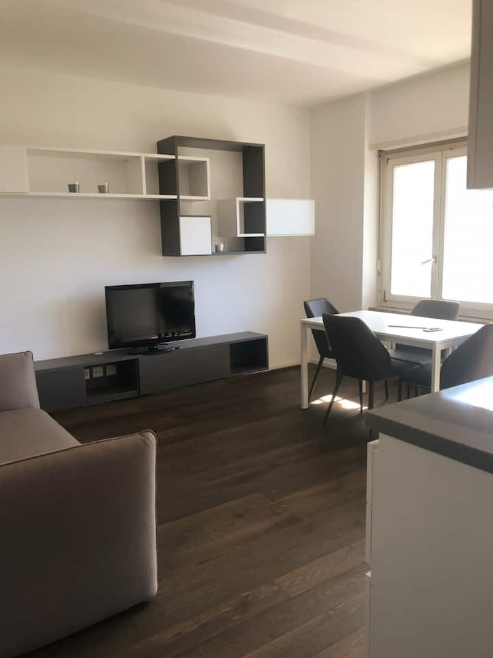 Two-rooms apartment near the USI