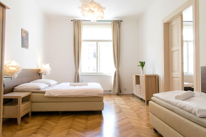 3Bdr 110m2 Wenceslas Sq. Apartm.