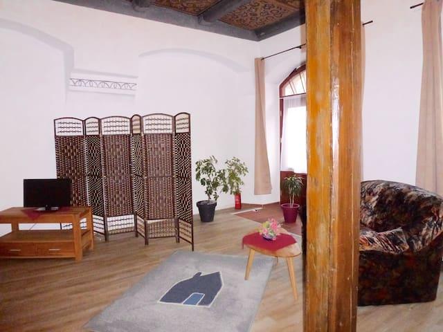 Separates 1-Raum Apartment ca. 50 m² Erdgeschoss