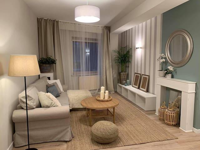 Luxurious Spacious Apartment, Rynek, Free Parking