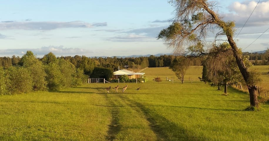 Summerfield, Lovedale, Hunter Valley - Rothbury - Rumah