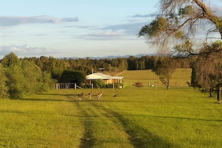 Summerfield, Lovedale, Hunter Valley - Rothbury