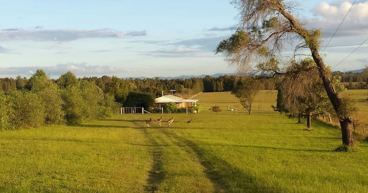 Summerfield, Lovedale, Hunter Valley