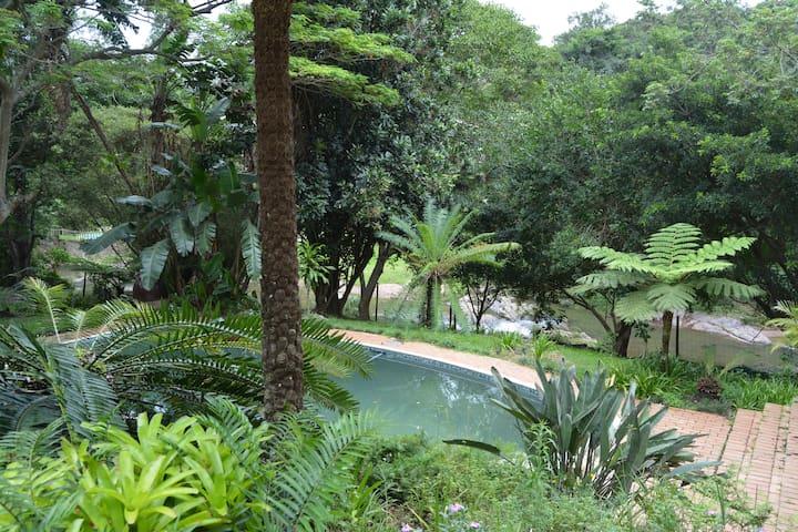 Peace of Nature, Westville, Durban, Funsunsea - Westville - Hus