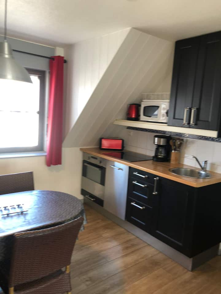 Appartement avec parking , Thonon centre
