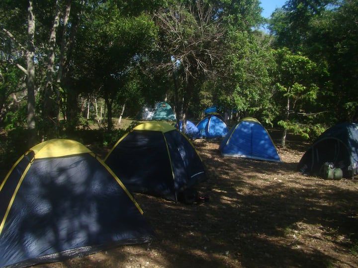 Tayra Eco-parque / Camping