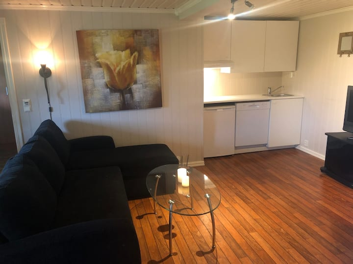 Centrum Rosendal/ Studio (1 room flat in basement)