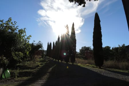 Euer Haus in der Toskana - Riparbella