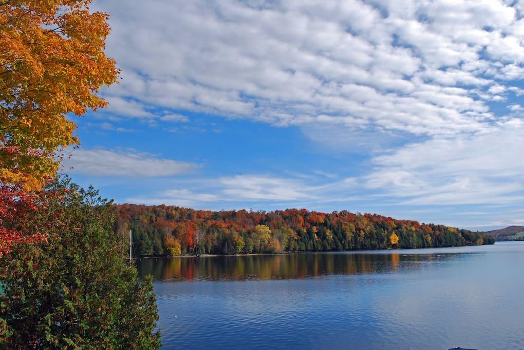 The autumn colors