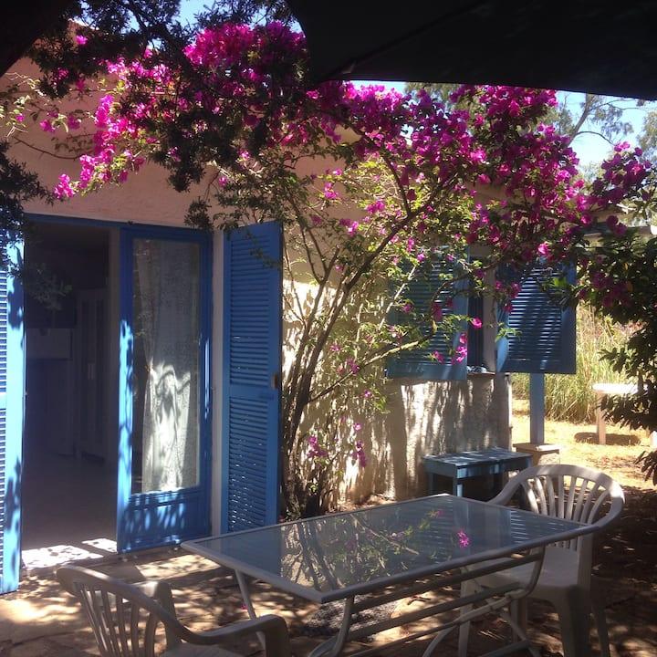mini villa jumelée MIMOSAS plage