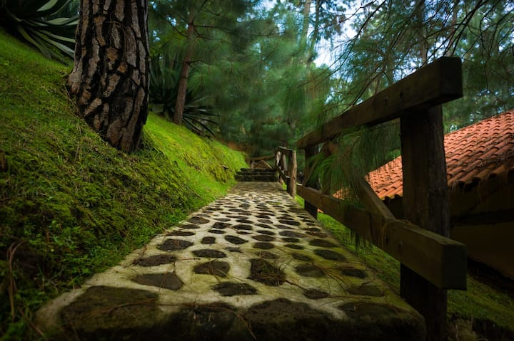 Cabaña romántica en el Bosque
