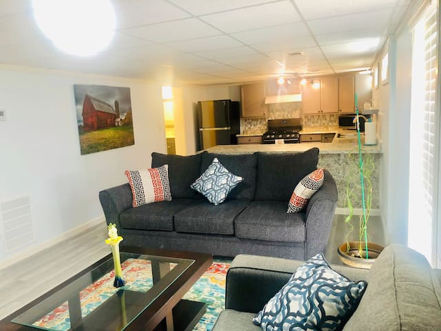 Brand New Beautiful 1 bedroom Basement Unit!