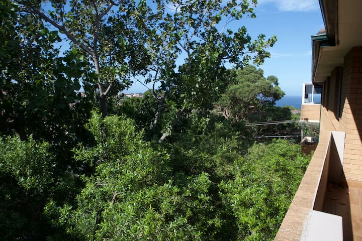 Coogee Beach Room with Tree and Ocean outlook