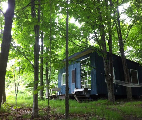 Unplugged ~ off-grid cabin in the woods