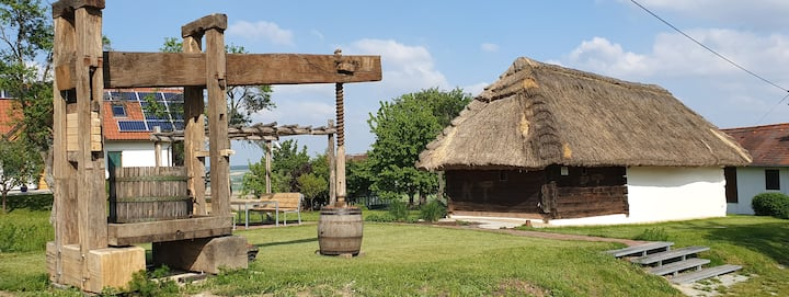 Historischer Weinkeller