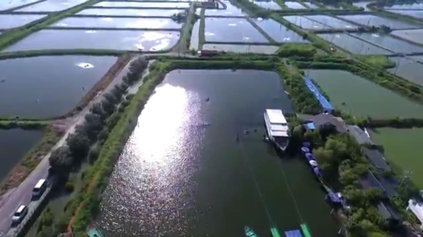 民宿位於魚塭中間,貼近大自然,觀賞黑面琵鷺到海邊踏浪賞夕陽。