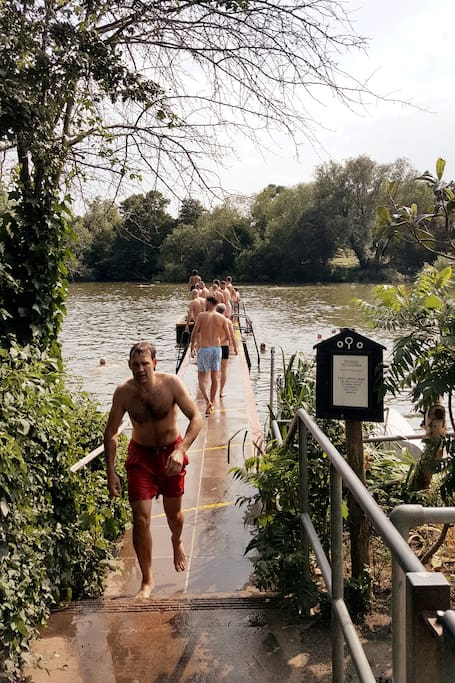 Hampstead Heath's men's pond