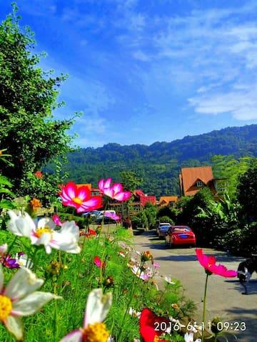 都江堰青城山旅游景区青城后山地中海风格三室两厅花园度假别墅家庭房 - Chengdu - Villa