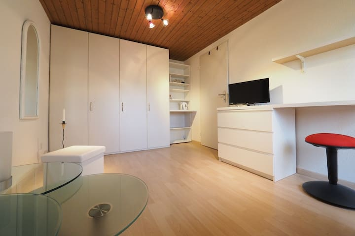 nice and bright room  in the middle of switzerland - Kappel - Huis