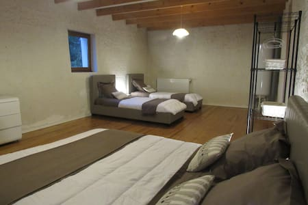 Nice bedroom 30sqm with 1 kingsize bed + 2 beds 90 - Cessieu - House - 2