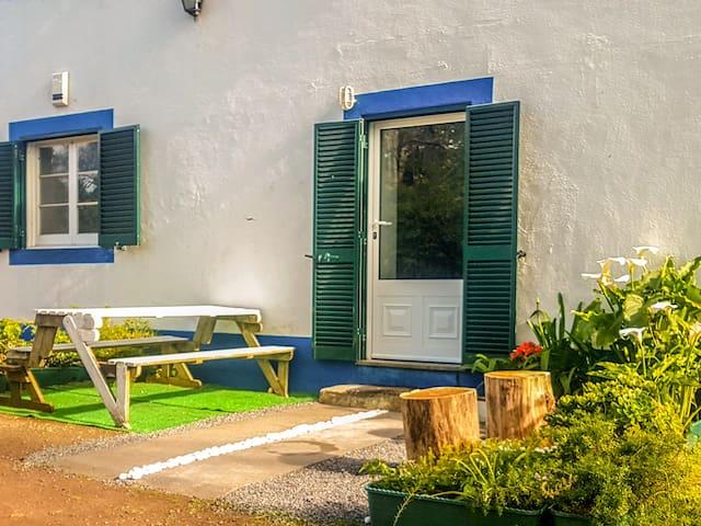 Zen Studio Garden