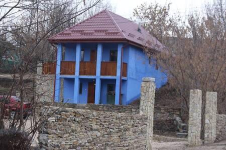"The ""Vila Serenada"", between nature and culture - Horodiste"
