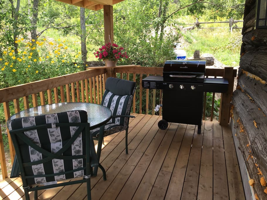 Patio table and Bbq for drinks and dinner