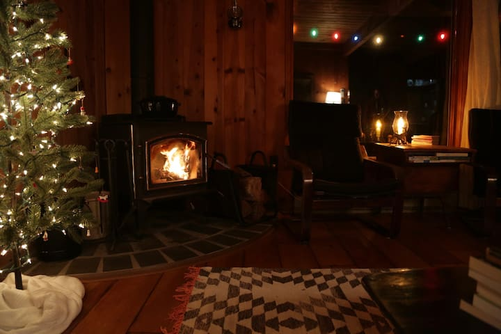 Cozy Hudson Valley Cabin - Kerhonkson - Ház