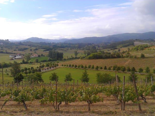 Enogastronomia nel Basso Monferrato - Montaldo Bormida - Apartemen