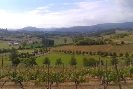 Enogastronomia nel Basso Monferrato - Montaldo Bormida - 아파트