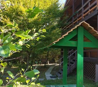 Дом в горах Адыгеи и Лагонаки