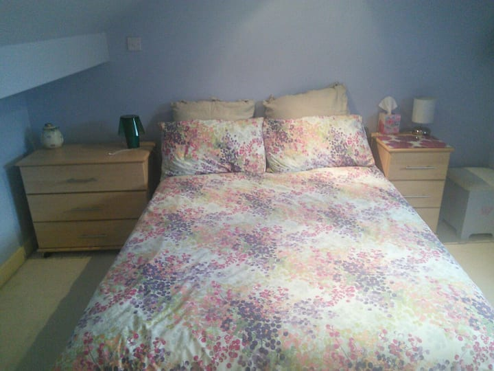 Private room with ensuite in friendly family house