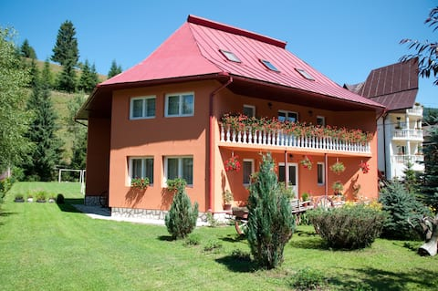 6 - Cozy room in the heart of Apuseni Mountains