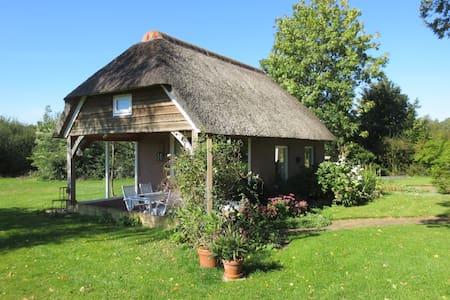 Landelijk gelegen vrijstaand huisje - Ommen (Arriën)