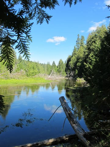 Beaver Valley River/Blue Mountain