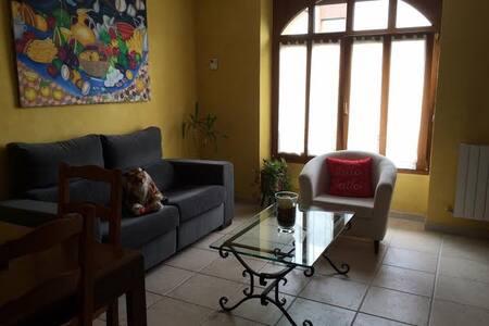 Precioso piso en el Centro de Irun - Irun