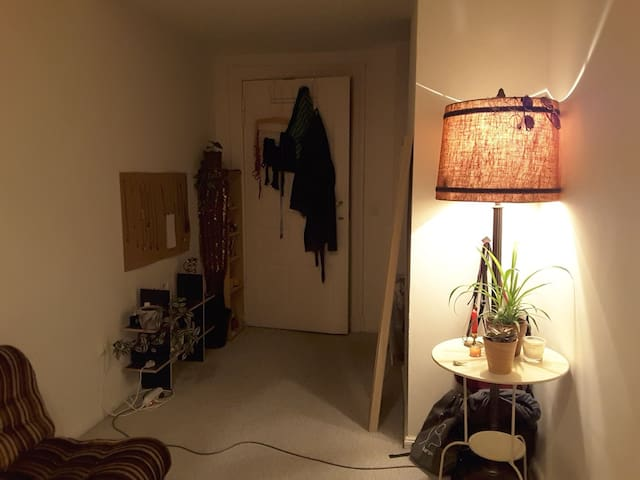 Cozy and quiet bedroom