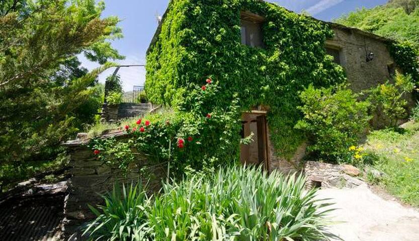 C. Andalucía, piscina y naturaleza - Pampaneira