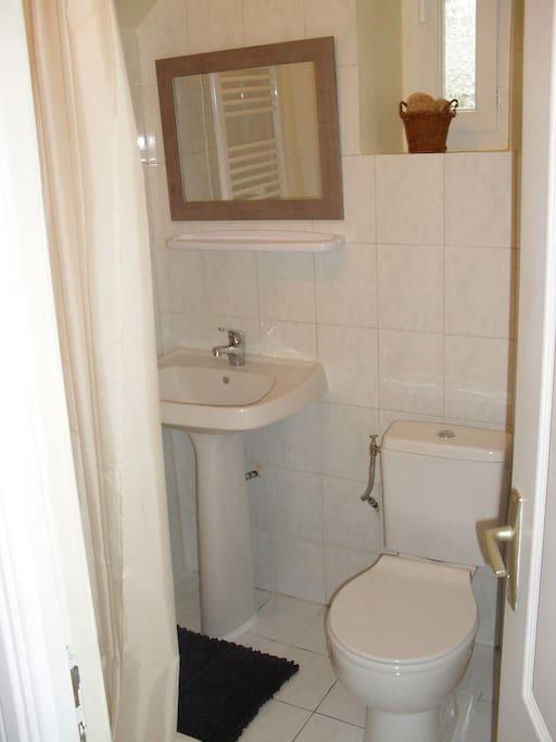 Petit salle de bain équipée avec douche et toilettes.