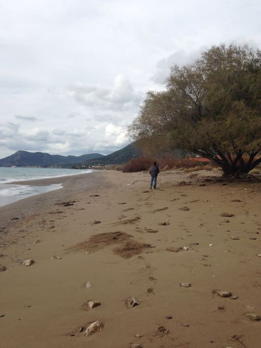 Beach 2 mins walk away