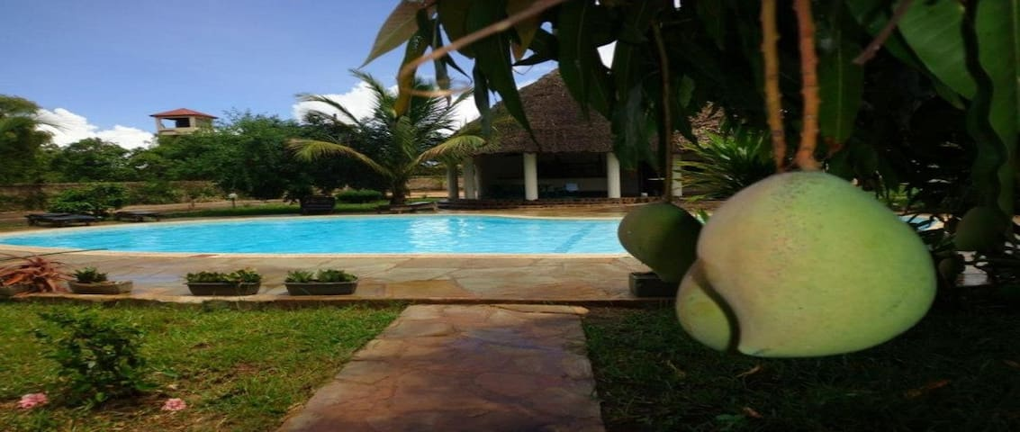 Apple Mango Apartments - Diani, Kenya 88