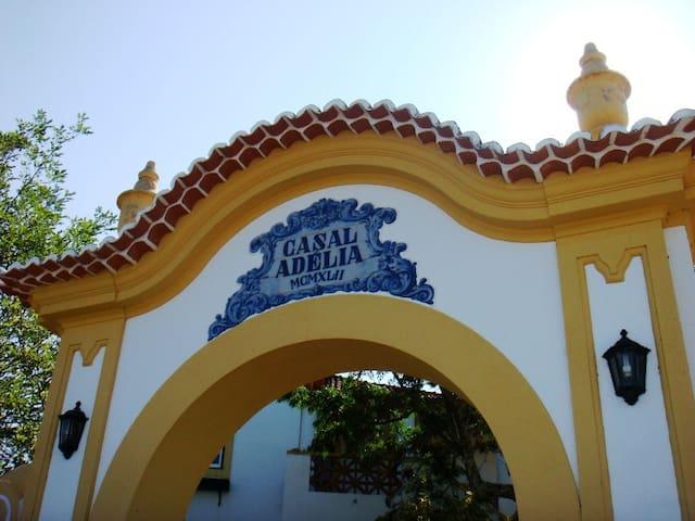 Casal Adélia, centre of Portugal - Alcaravela - Villa