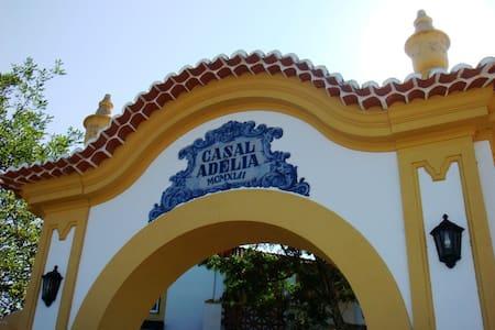 Casal Adélia, centre of Portugal - Alcaravela - Вилла