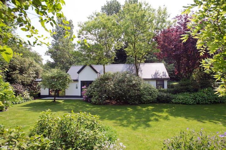 Luxury Garden Villa Center City - Den Haag - Villa