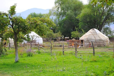 Holiday in Yurt Camp all year long ALMALUU - Tong